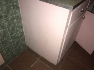 Mold on a bathroom cabinet